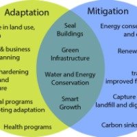 Notes on Climate Change Adaptation and Mitigation Strategies