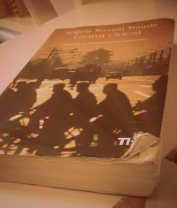 recensione libro angela terzani